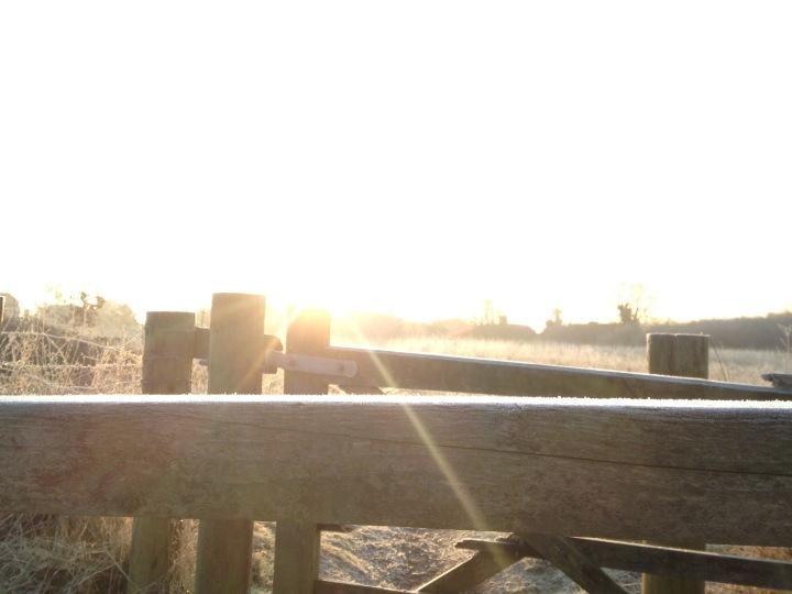 Sunrise in frost