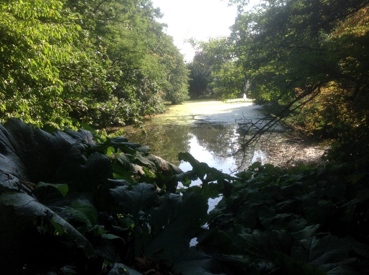 bromley-palace-park-07
